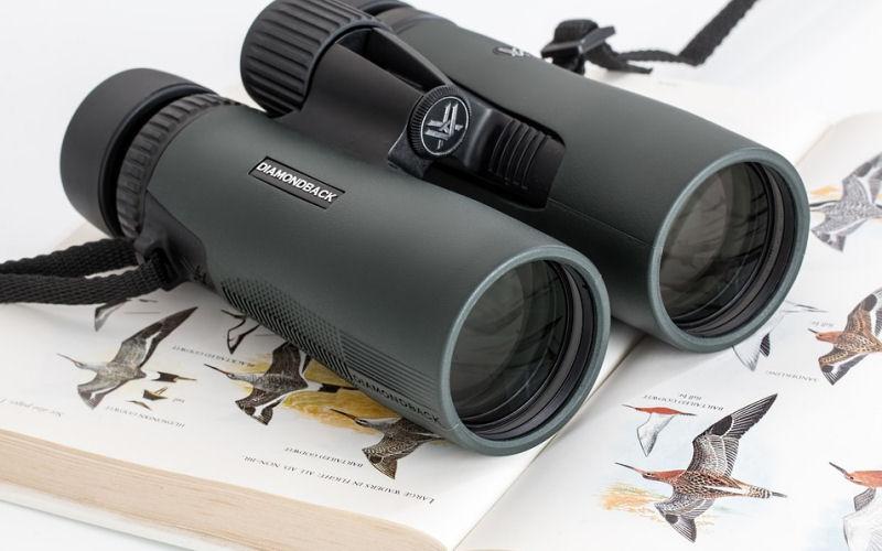 benefits of birdwatching